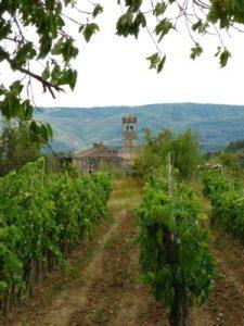 Piemonte D Istria 13