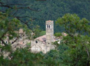 Piemonte D Istria 4